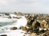 ouessant12